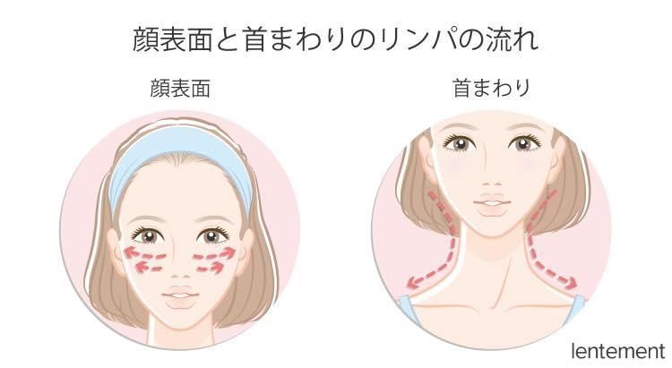 顔表面と首まわりのリンパの流れ
